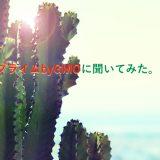 【独占取材】FXプライムbyGMOが1/20からメキシコペソ円導入!
