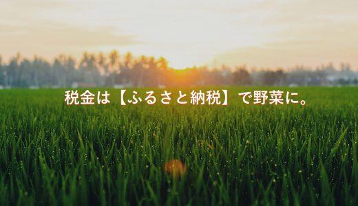 2017年の仮想通貨やFXの税金は?14万円が楽天ふるさと納税で野菜に。