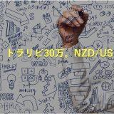 【第2弾】トラリピ30万で始めるNZD /USDの設定をパターン別で徹底解説!