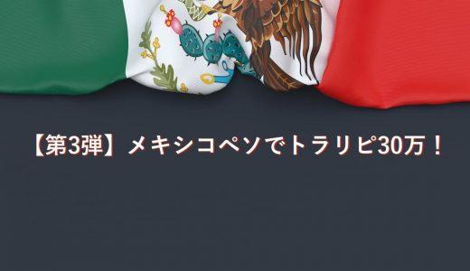 【第3弾 186日目】トラリピでメキシコペソに30万円で挑戦!あっきんの設定と実績は?