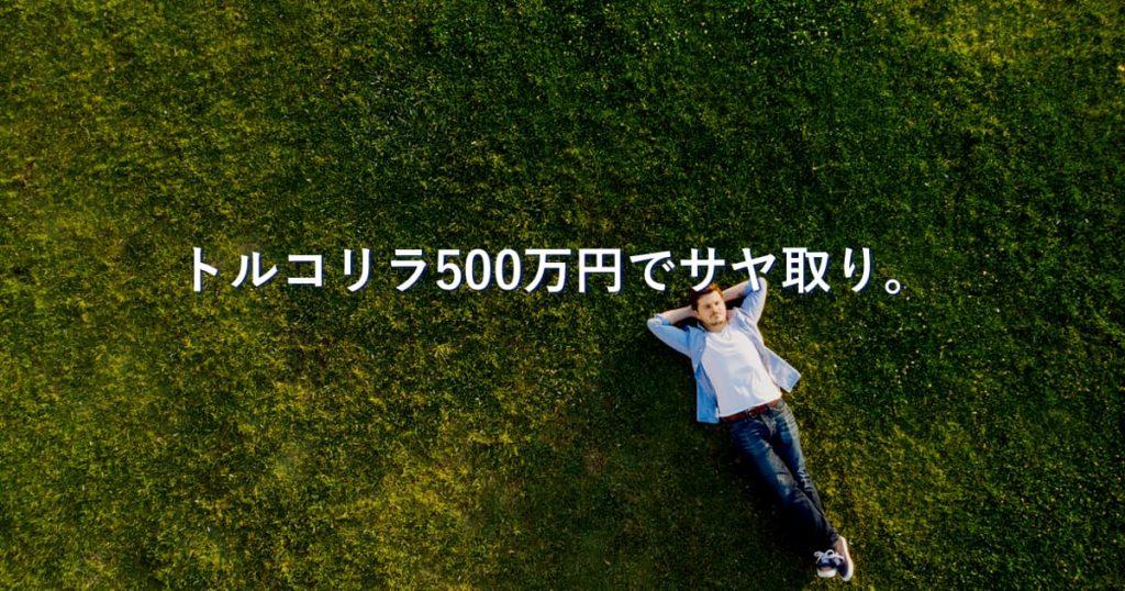 【0日目】500万円でトルコリラの金利だけを狙ってサヤ取り。結果は?