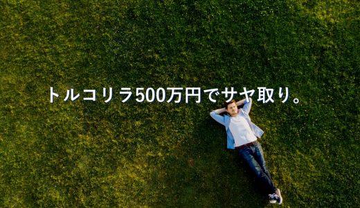 【41日目】500万円でトルコリラの金利だけを狙ってサヤ取り。結果は?