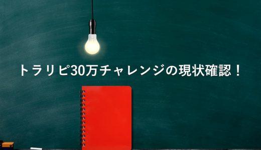 【レポート】トラリピ30万チャレンジの現状。含み損やレンジを改めて確認!