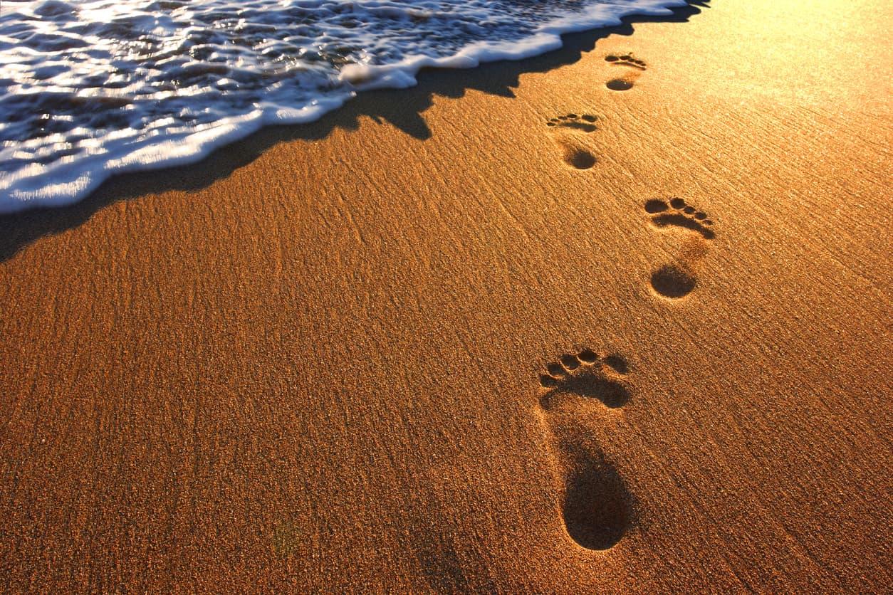 トッピングリピートの足跡