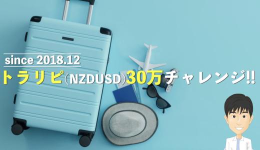 【981日目】トラリピ初心者向け30万円の設定・始め方。カナダドル円からNZドル米ドルに引越し中。